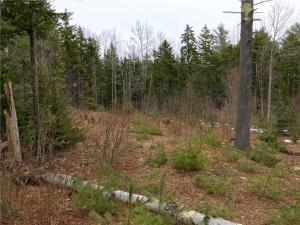 Lot 12 Harpswell Neck Road, Harpswell, ME 04079