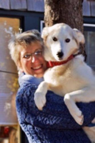Bonnie Boisvert agent image