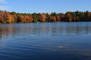 Maine lakefront on Burnt Meadow!