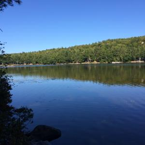 Lot#12 Alderberry Bay Drive, Naples, ME 04055