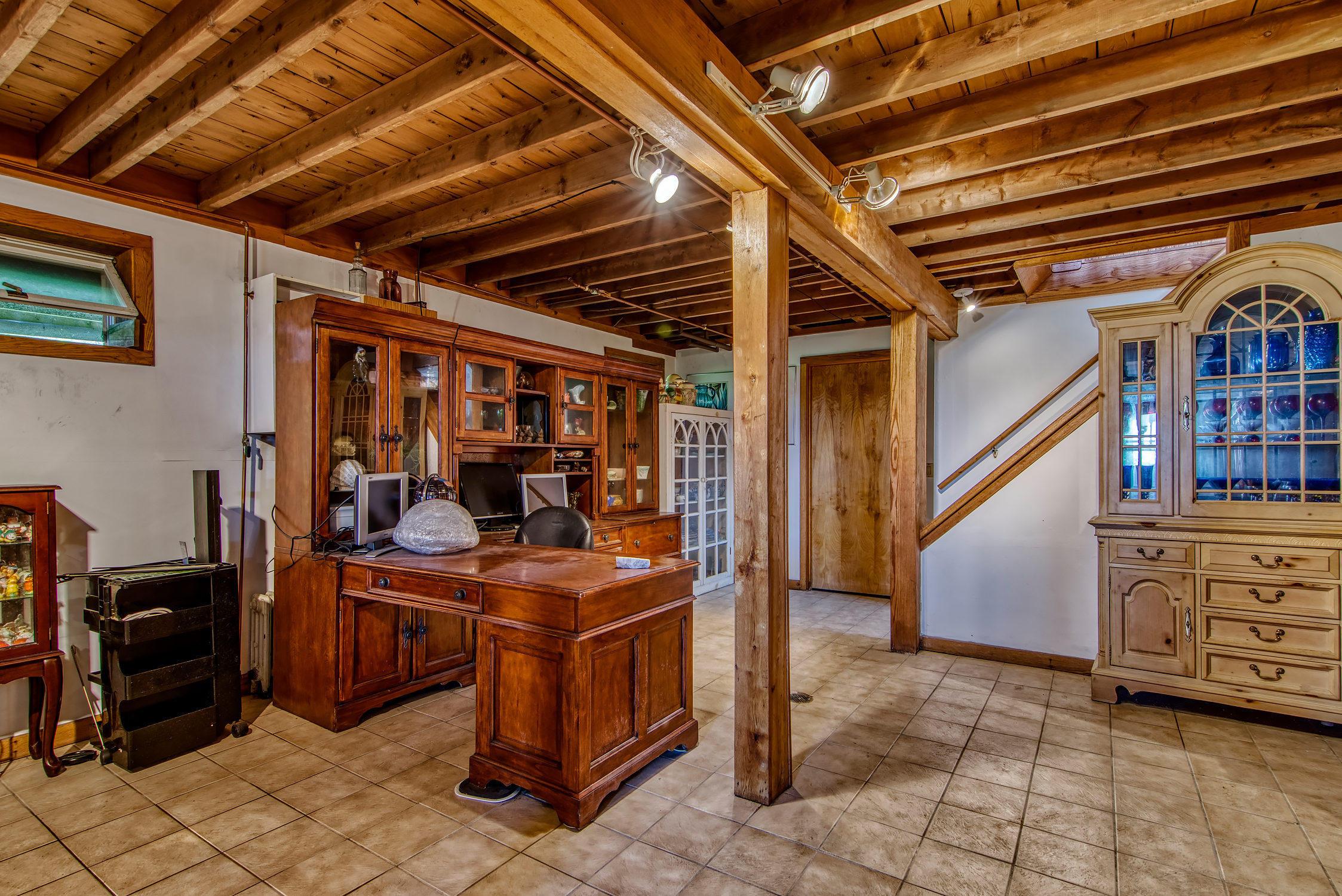 Basement living room/office
