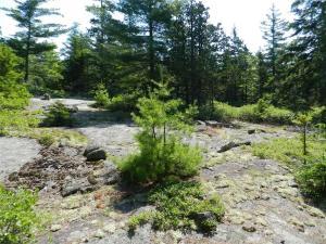 Lot 7 Rock Garden Way
