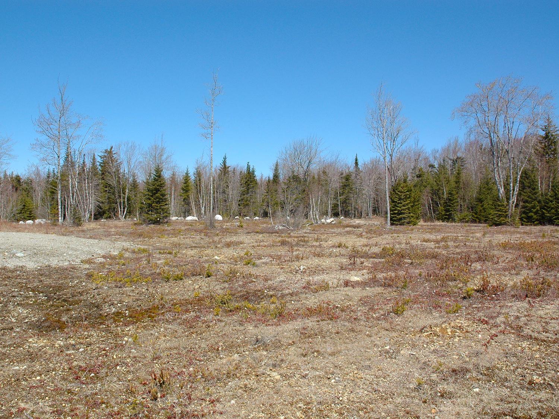 Horse Farm Road Land