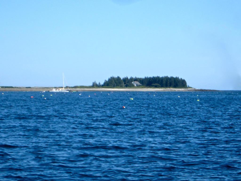 boatandMaypole