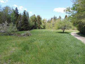 441 Pretty Marsh Road