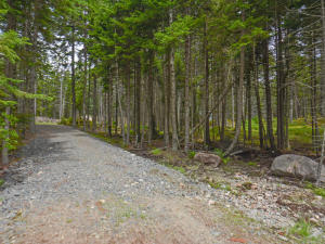 (lot 30) ForestWay