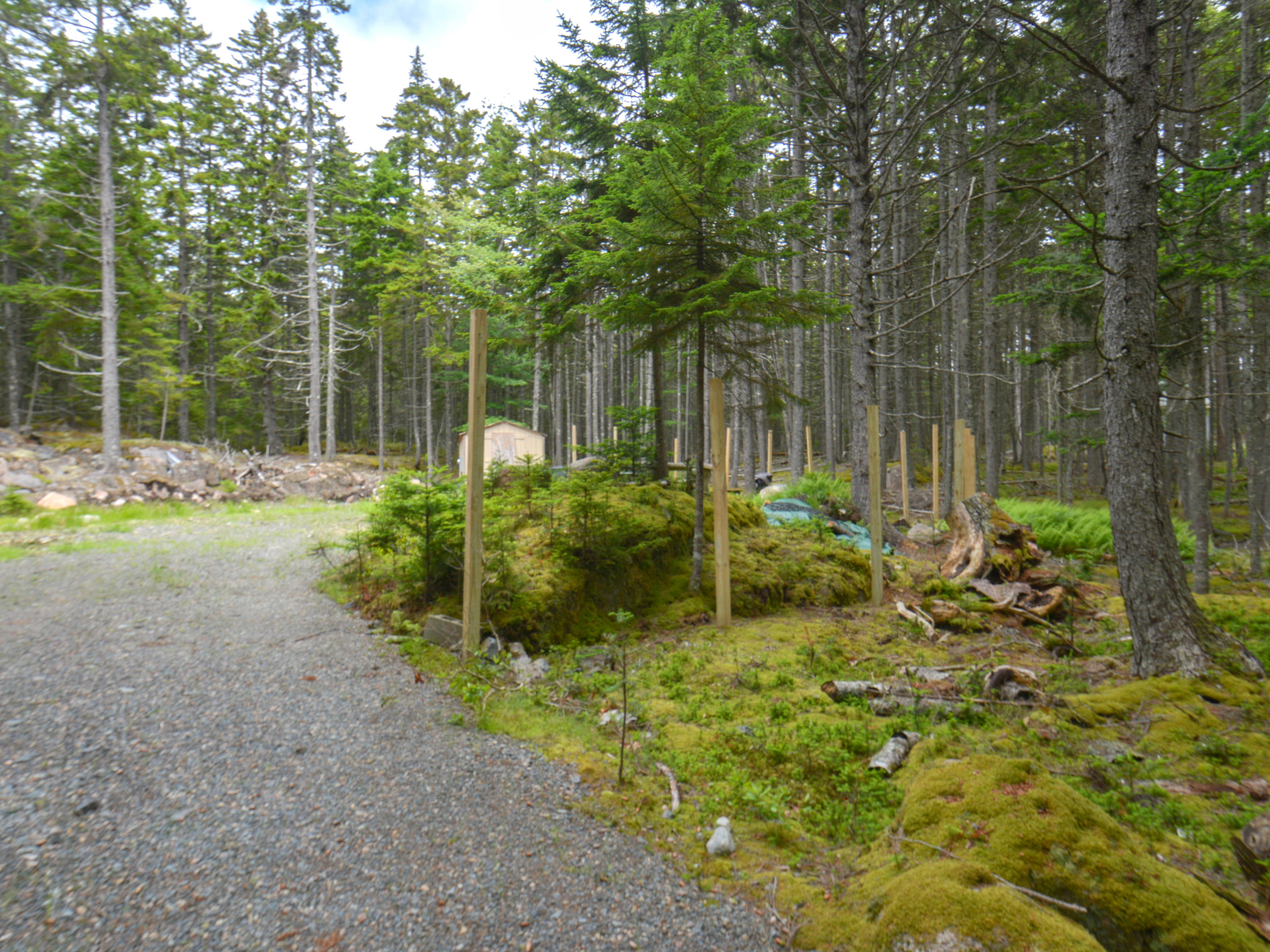 0 (lot 30) Forest Way