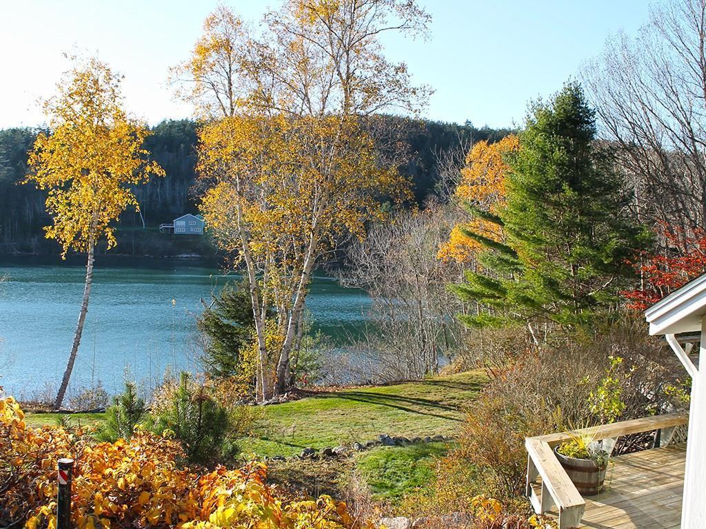 Beautiful fall colors and water view