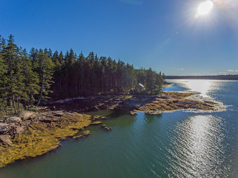 Seal Cove aerials-52