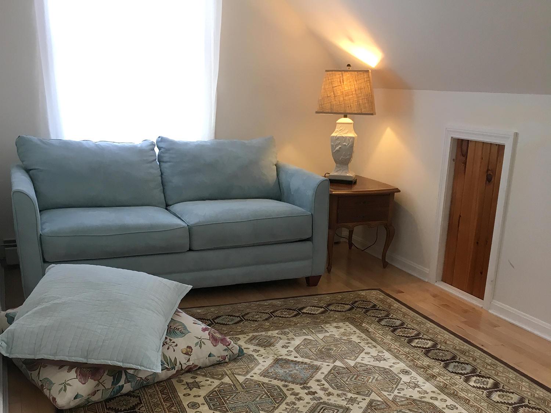 Den with Sleeper Sofa