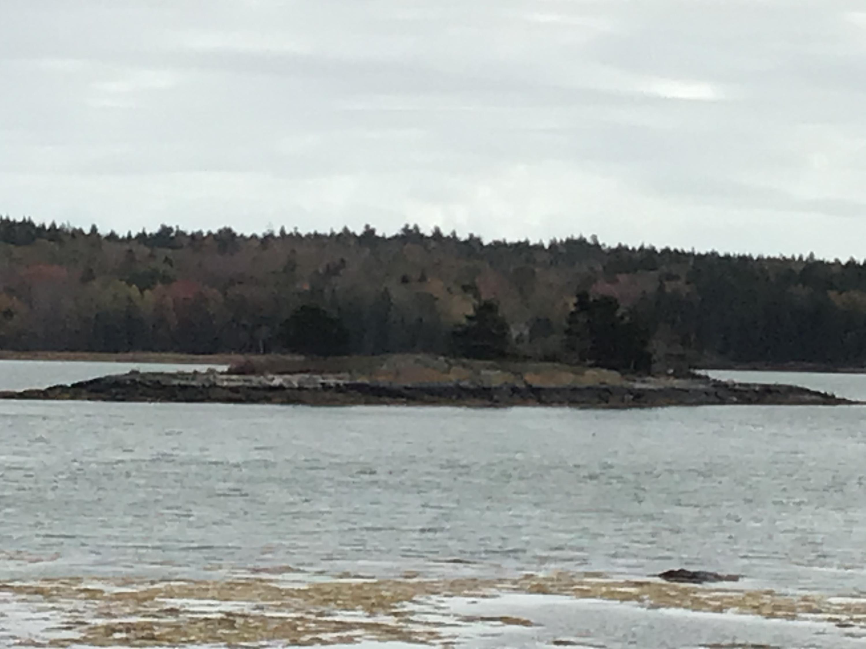 0 Lobster Island