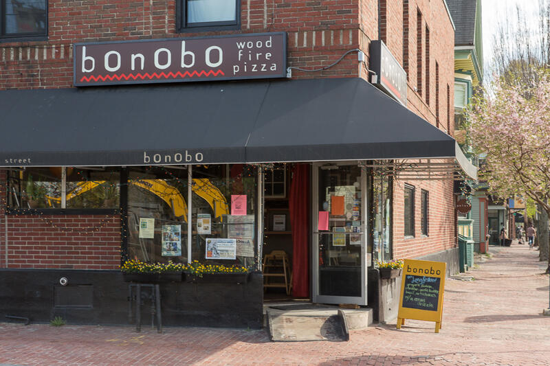 Bonobo_Summer