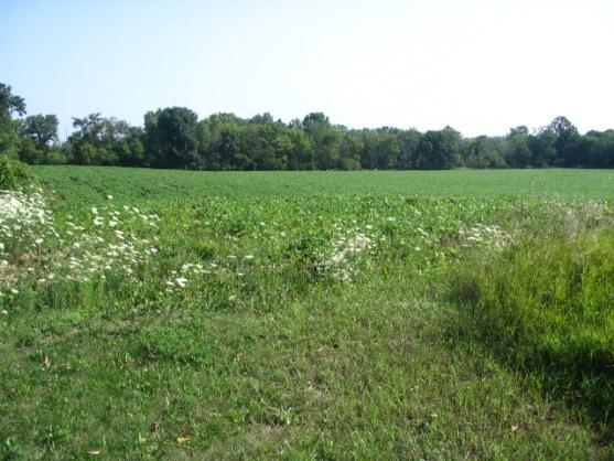 Lt4 State Rd 83, Erin, Wisconsin 53027, ,Vacant Land,For Sale,State Rd 83,954204