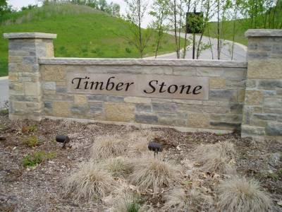 LT53 TIMBER STONE SUBDIVISION, Richfield, Wisconsin 53033, ,Vacant Land,For Sale,TIMBER STONE SUBDIVISION,1083155