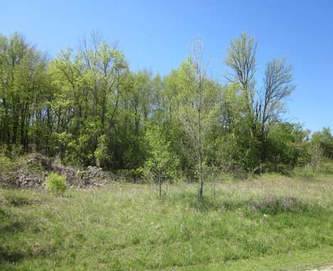 0 Spring Hills, Greenbush, Wisconsin 53026, ,Vacant Land,For Sale,Spring Hills,1256660