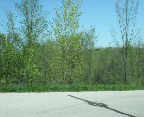 0 Spring Hills, Greenbush, Wisconsin 53026, ,Vacant Land,For Sale,Spring Hills,1256655