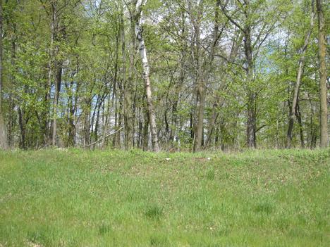 0 Ridge Creek Rd, Elkhart Lake, Wisconsin 53020, ,Vacant Land,For Sale,Ridge Creek Rd,1256648