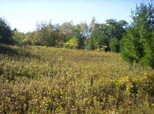 L1 Decker Rd, Franklin, Wisconsin 54230, ,Vacant Land,For Sale,Decker Rd,1287094