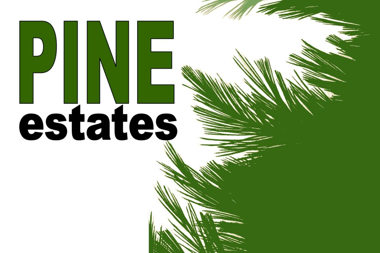 L5B1 PINE ESTATES, Caledonia, Minnesota 55947, ,Vacant Land,For Sale,PINE ESTATES,846241