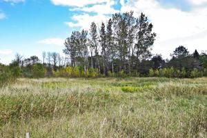682 Falls Rd, Grafton, Wisconsin 53024, ,Vacant Land,For Sale,Falls Rd,1569443