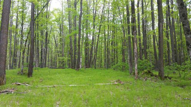 0 Limberg Ln, Silver Cliff, Wisconsin 54104, ,Vacant Land,For Sale,Limberg Ln,1569547