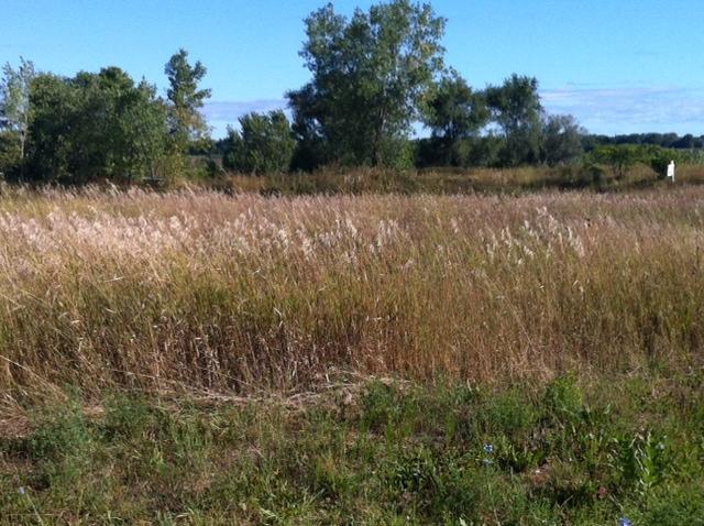 7912 Glenbrook Rd, Milwaukee, Wisconsin 53223, ,Vacant Land,For Sale,Glenbrook Rd,1570949