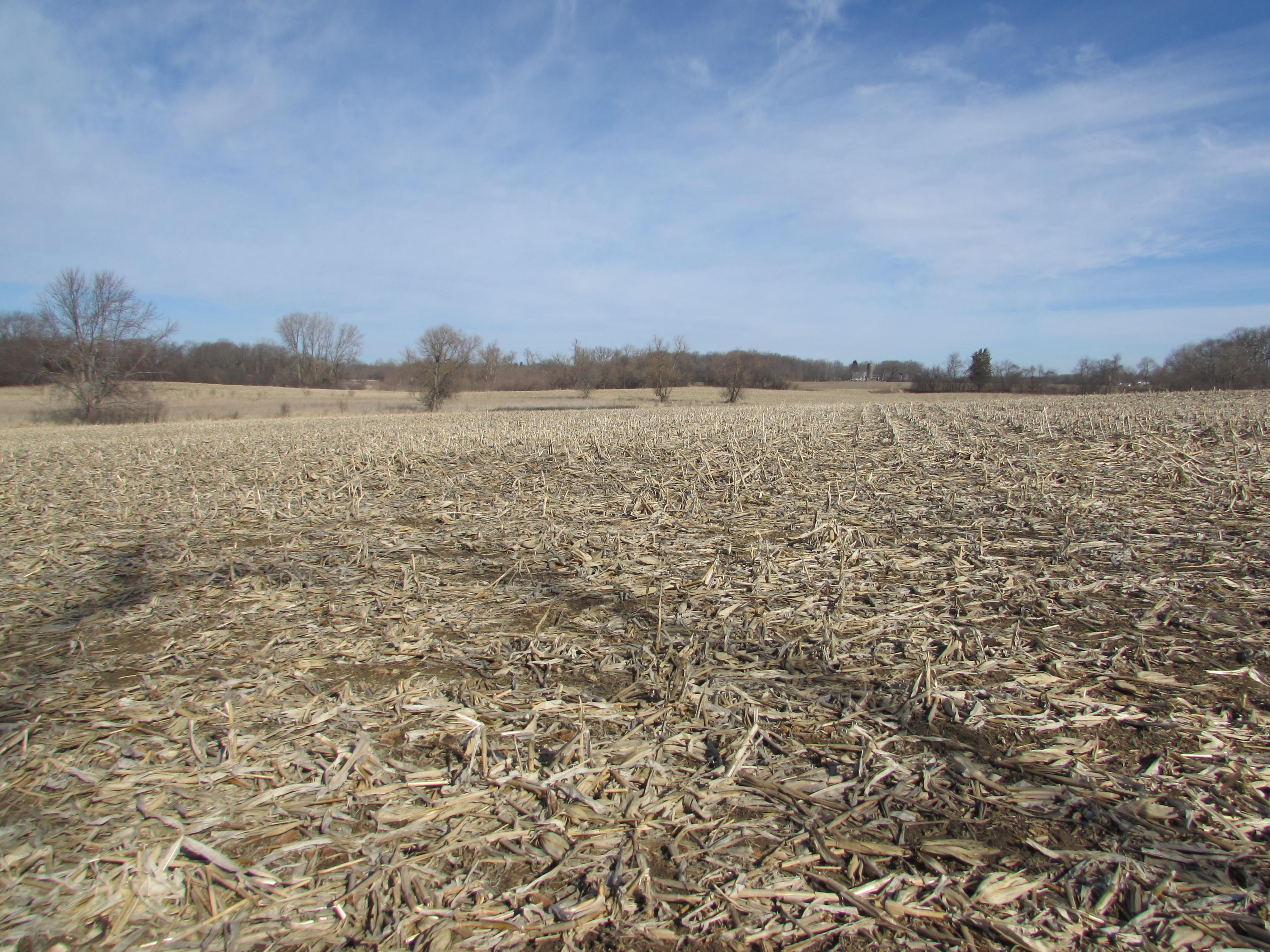 2359 Beck Dr, Rochester, Wisconsin 53185, ,Vacant Land,For Sale,Beck Dr,1571349