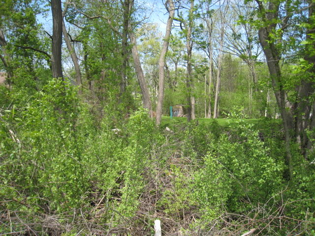 Lt4 Division St, Delafield, Wisconsin 53018, ,Vacant Land,For Sale,Division St,1567318