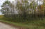 Lt White Doe LN, Lake, WI 54114