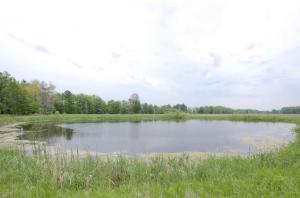 45 Acres of agricultural land in Peshtigo NEXT to W3545 Richter Rd! Buildable, hunt, fish, and tillable! Man made pond is 18 ft deep and has fish. Road frontage w/power, no natural gas. Land is partially cleared and partially wooded. Apprx a couple miles to bay, boat landing and park. Close to Peshtigo and Oconto with good deer hunting and near farming!  Deed Restriction: No living quarters or home to be constructed South of the pond.  Located next to fire number W3545 Richter Rd. Sign marks location of the parcel. 200x1320 Pond is included in the parcel. House is not.