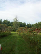 N10273 Forest Rd, Middle Inlet, WI 54177
