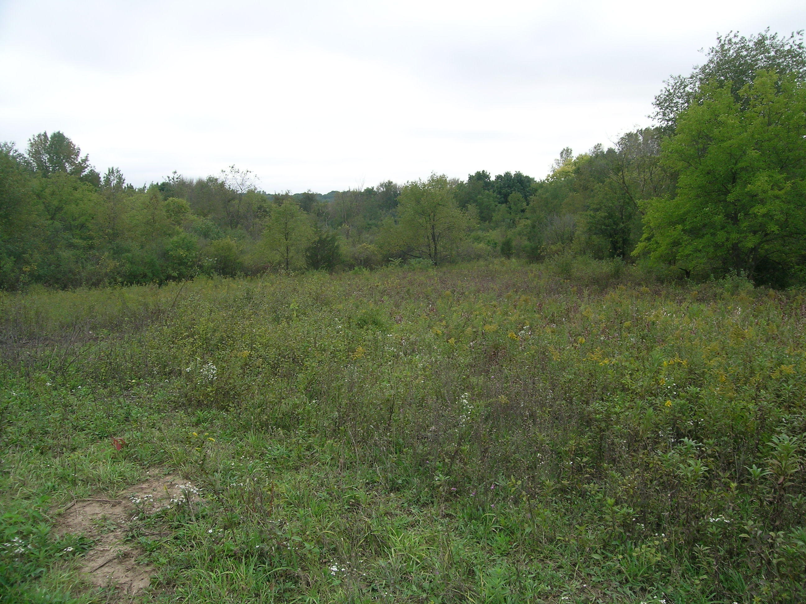 N47W27375 Lynndale Rd, Pewaukee, Wisconsin 53072, ,Vacant Land,For Sale,Lynndale Rd,1607465