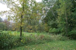 Property for sale at N620 County Road Cc Unit: 20 acres, Random Lake,  WI 53075