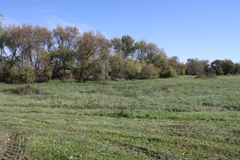 Lt1 Cobblestone Rd, Walworth, Wisconsin 53184, ,Vacant Land,For Sale,Cobblestone Rd,1610645