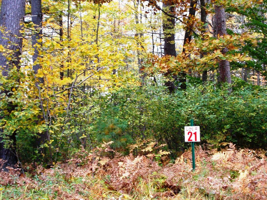 Lot 21 Beaudin Ln, Porterfield, Wisconsin 54143, ,Vacant Land,For Sale,Beaudin Ln,1610736