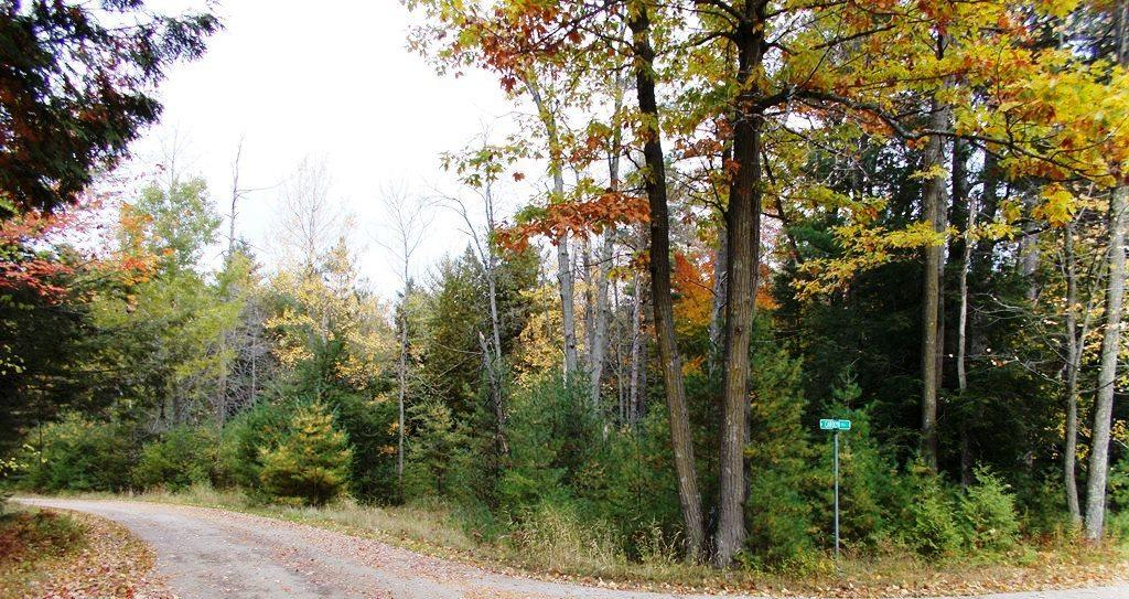 Lot 25 Beaudin Ln, Porterfield, Wisconsin 54143, ,Vacant Land,For Sale,Beaudin Ln,1610726