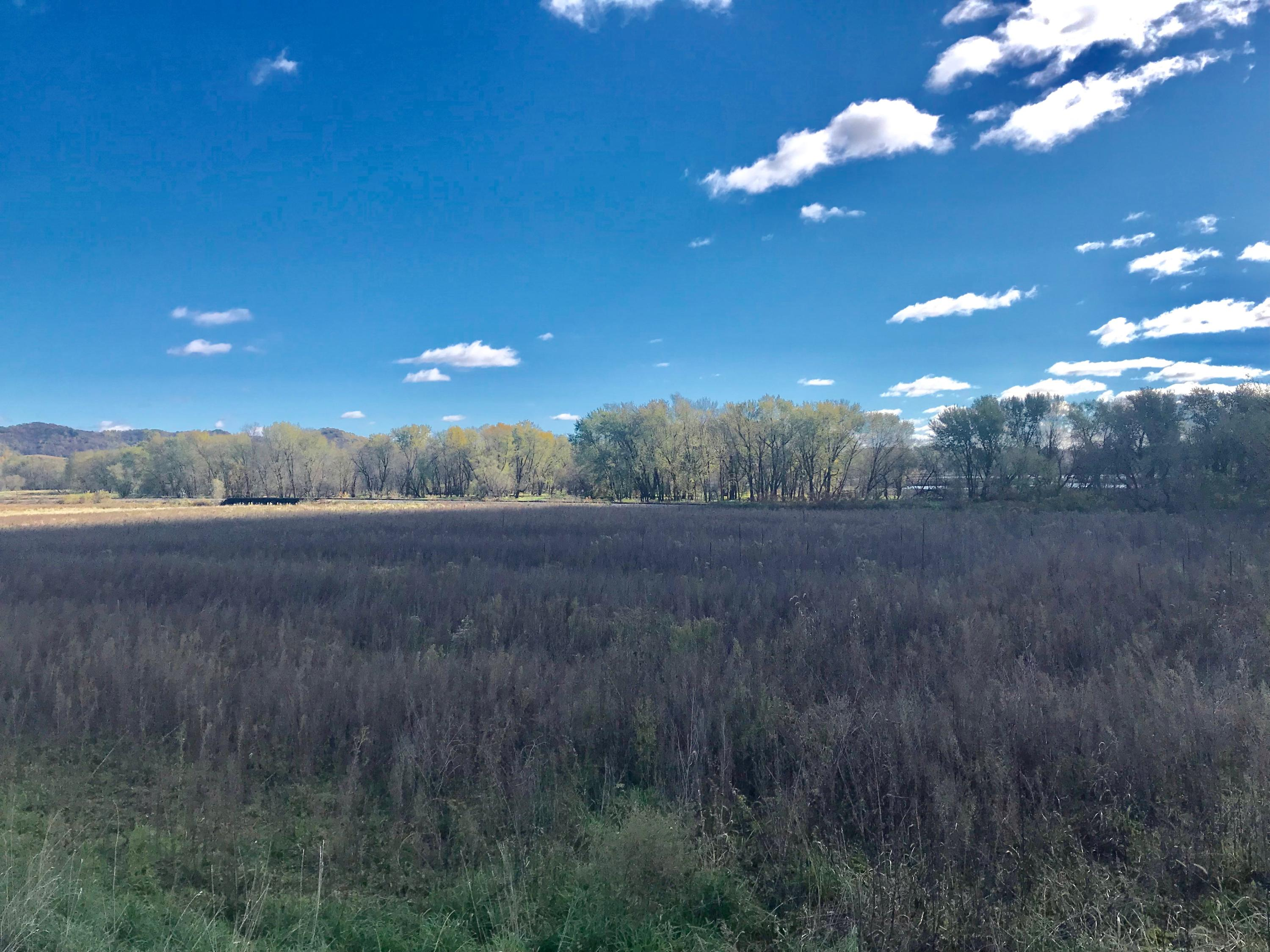 XXX County Road P, Buffalo, Wisconsin 54629, ,Vacant Land,For Sale,County Road P,1610783