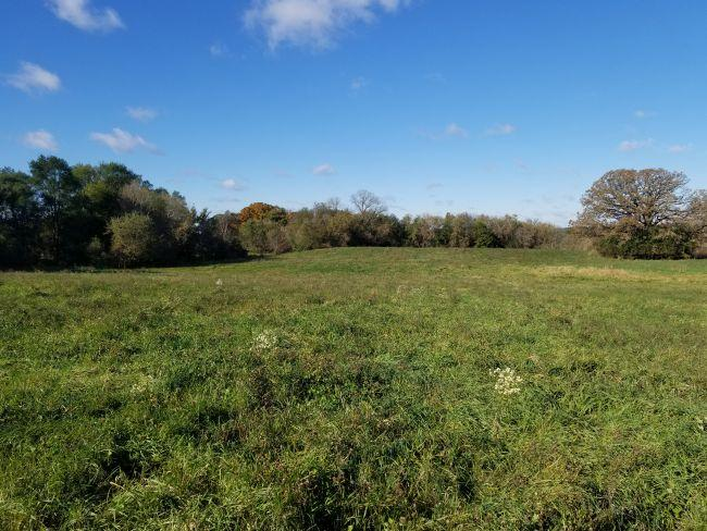 0 County Rd E, Palmyra, Wisconsin 53156, ,Vacant Land,For Sale,County Rd E,1610842