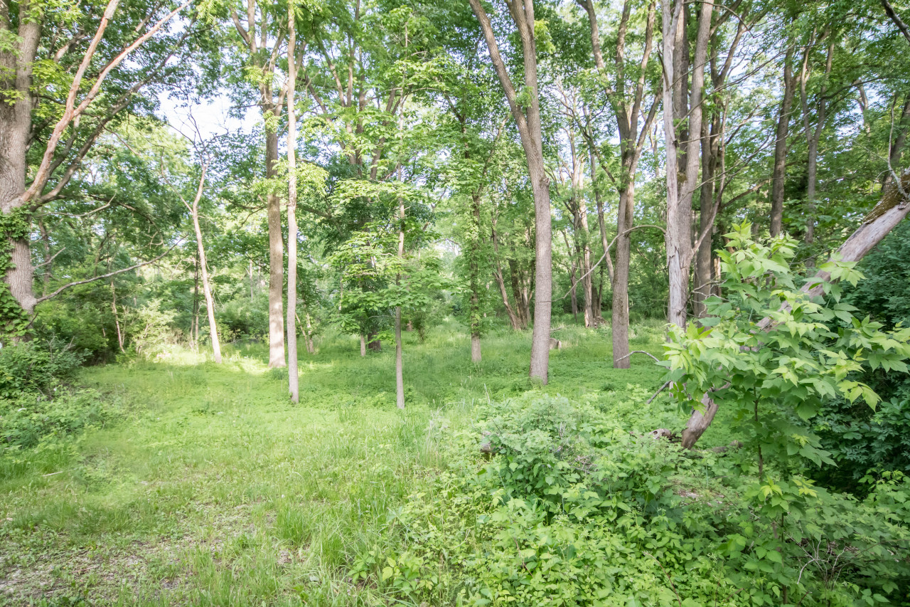 Lt2 Maple Ave, Delafield, Wisconsin 53188, ,Vacant Land,For Sale,Maple Ave,1574976