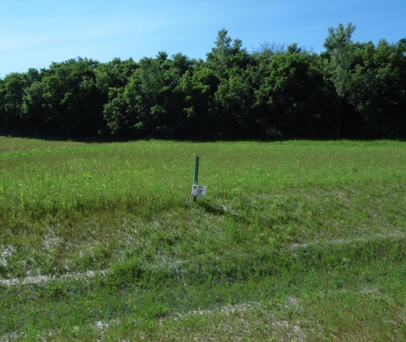 Lt11 Rookery Rd, Delafield, Wisconsin 53072, ,Vacant Land,For Sale,Rookery Rd,1616580