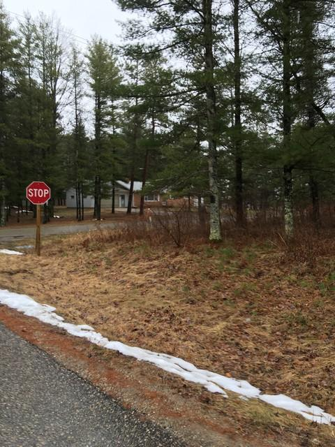 Lt1 Cora Ln, Stephenson, Wisconsin 54114, ,Vacant Land,For Sale,Cora Ln,1616263