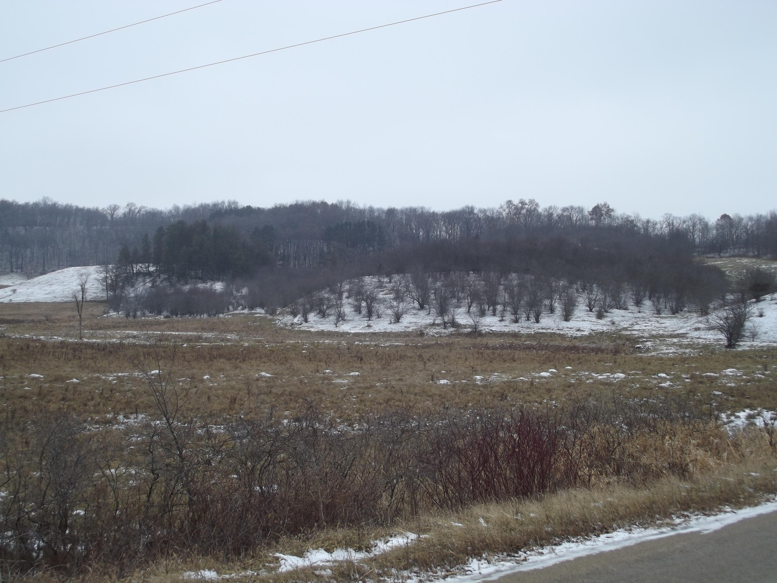 44 AC Kerry Ave, Wilton, Wisconsin 54670, ,Vacant Land,For Sale,Kerry Ave,1616450