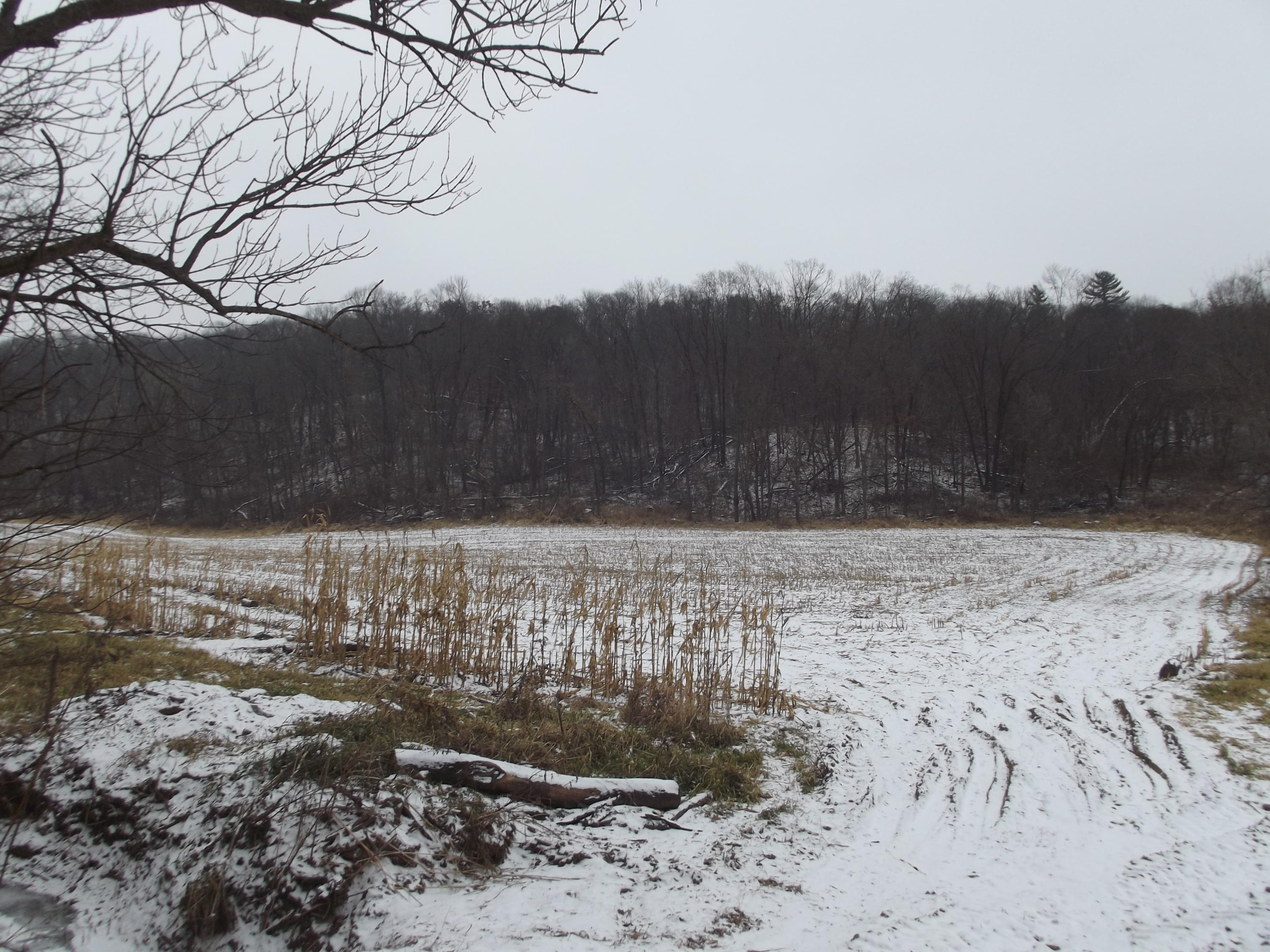 15 AC Kettle Rd, Wilton, Wisconsin 54670, ,Vacant Land,For Sale,Kettle Rd,1616449