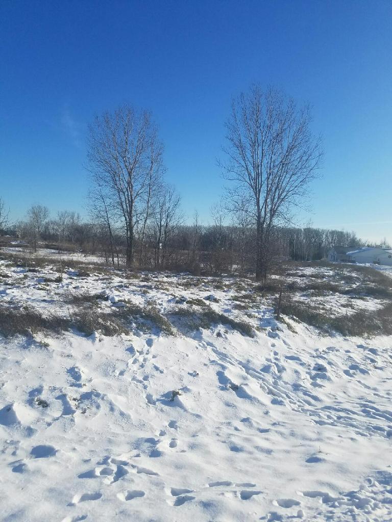Lt 1 Still Meadows, Sheboygan, Wisconsin 53083, ,Vacant Land,For Sale,Still Meadows,1487420