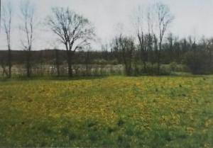 Property for sale at Lt0 Mill Rd, Kewaskum,  WI 53040