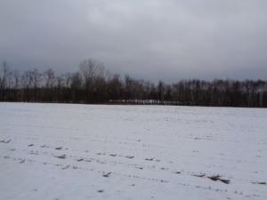 Property for sale at Lt0 South Chase Rd, Sobieski,  WI 54171