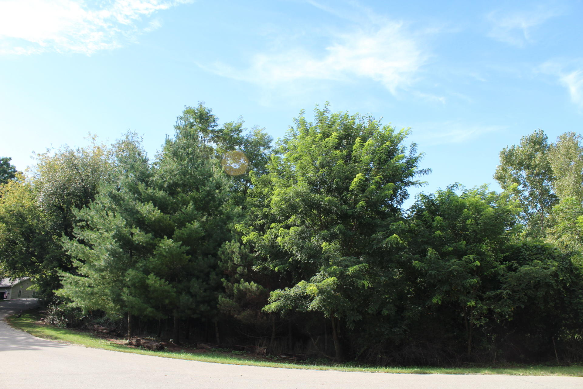 Lt142 Bubbling Springs Dr, La Grange, Wisconsin 53121, ,Vacant Land,For Sale,Bubbling Springs Dr,1619164