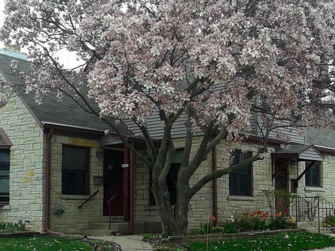 4408 Adams Ave, Milwaukee, Wisconsin 53207, 3 Bedrooms Bedrooms, ,2 BathroomsBathrooms,Single-Family,For Sale,Adams Ave,1619873