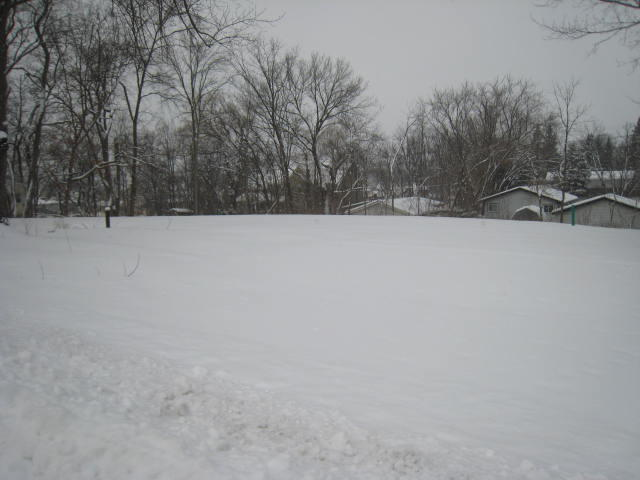 719 Division St, Delafield, Wisconsin 53018, ,Vacant Land,For Sale,Division St,1566156