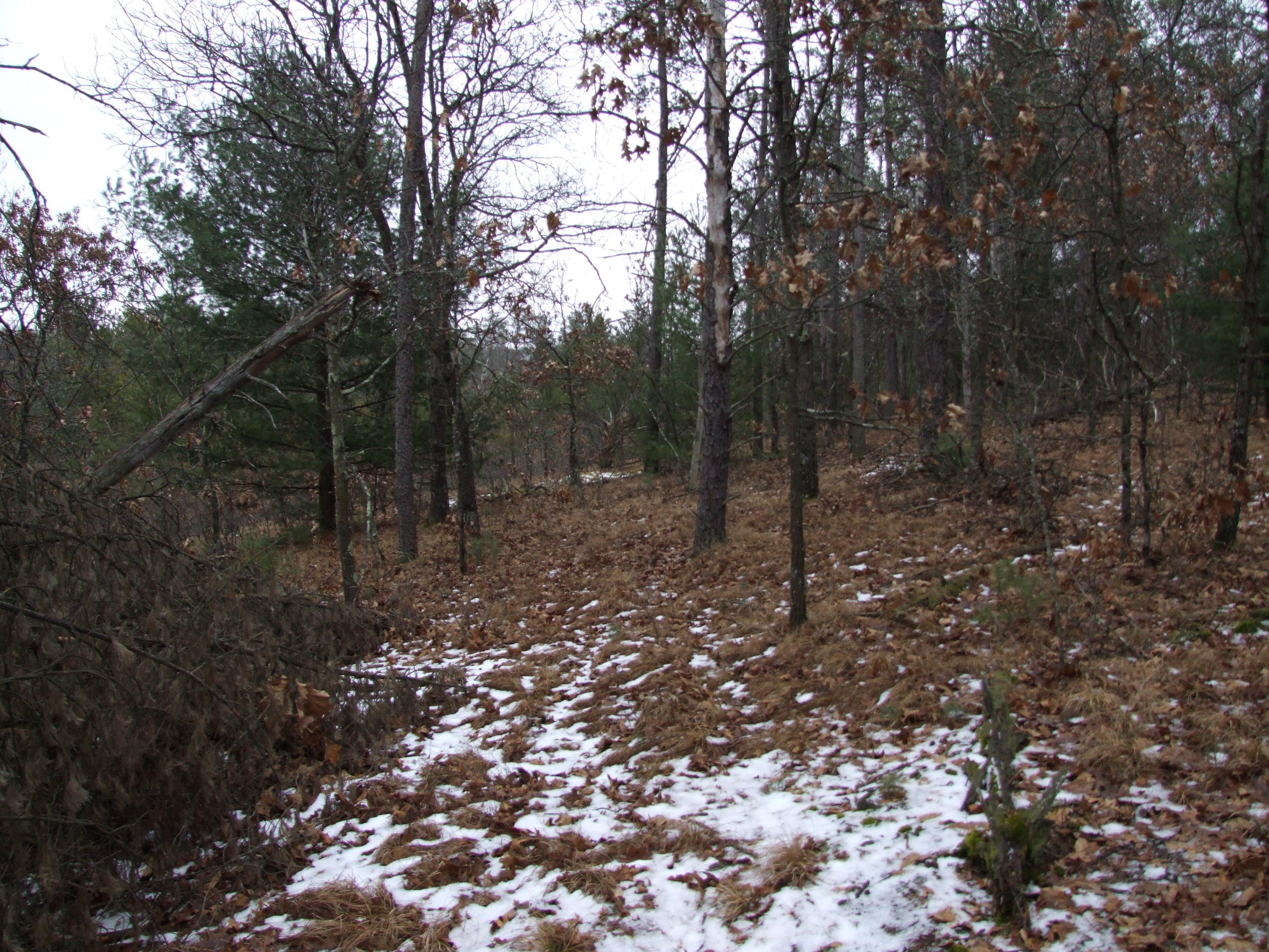 4008 9th Ave, Dell Prairie, Wisconsin 53965, ,Vacant Land,For Sale,9th Ave,1622489
